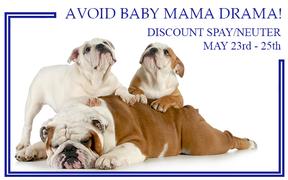 Say No to Baby Mama Drama