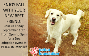 Dog Adoption Event at Petco!