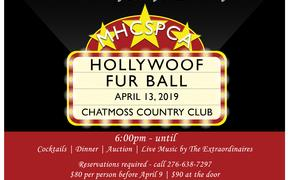 FurBall Gala - Hollywoof Nights