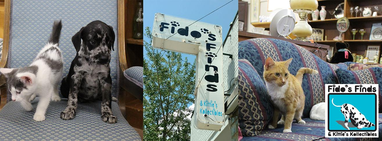Fido's Finds and Kittie's Kollectibles